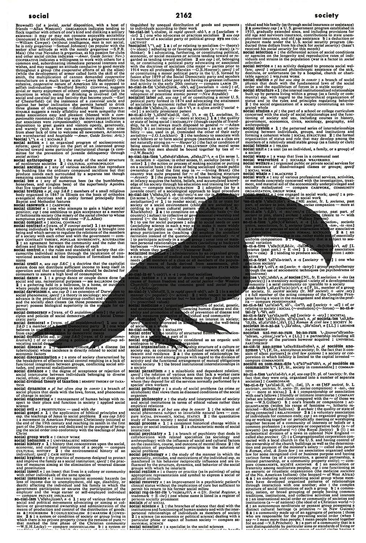 Toucan ART PRINT - Bird ART PRINT - Vintage Art Print - Bird Silhouette Art Print - Animal Illustration - Wildlife Picture - Vintage Dictionary Art Print - Wall Hanging - Book Print 1163D