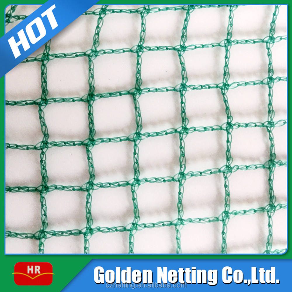 best selling 100% virgin HDPE plastic bird trapping net