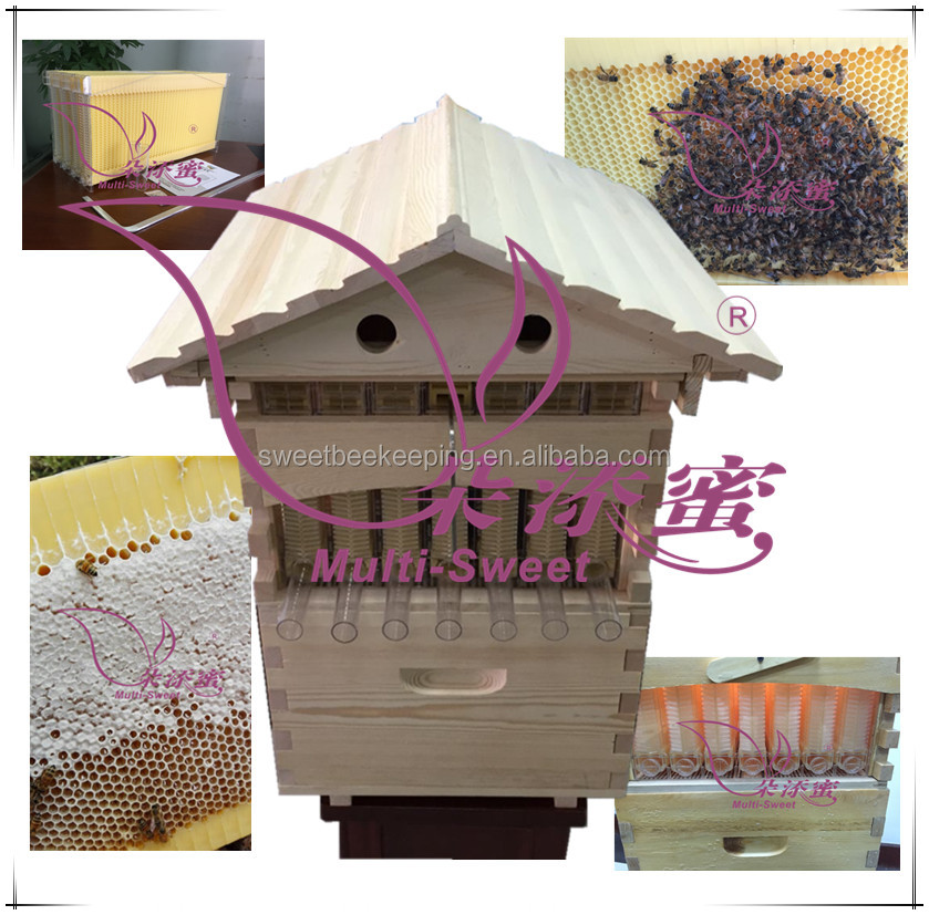 New style honey beehive automatic flow honey bee hive wood with frame