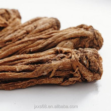 Supplying natural organic herbal extract angelica essential oil from root