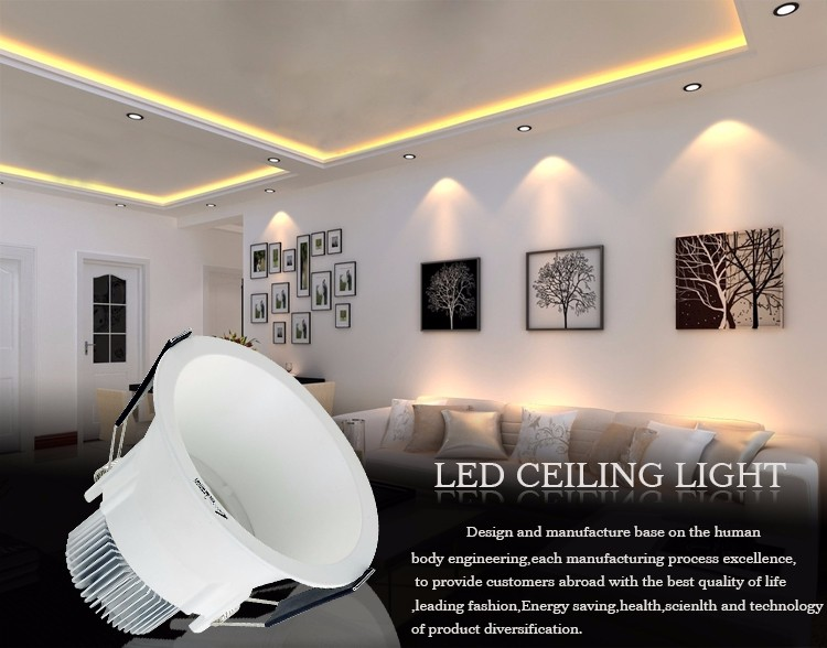 Leimove ceiling decoration adjustable led downlights custom made for customization-2