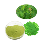 GMP factory supply natural Moringa Oleifera Leaf extract Powder