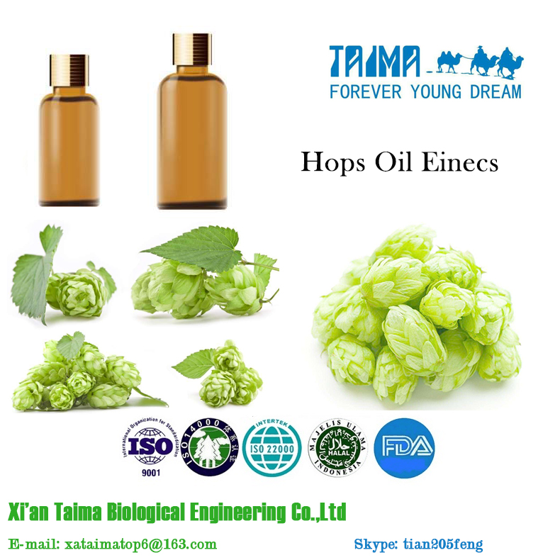 2017 Best Selling Hops Oil Einecs TAIMA Essential Oil CAS NO. 8007-04-3
