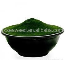 Spirulina Powder for Anti -fatigue,Algae With High Protein Powder