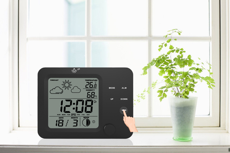 Weather Station Professional with Low Battery Indicator