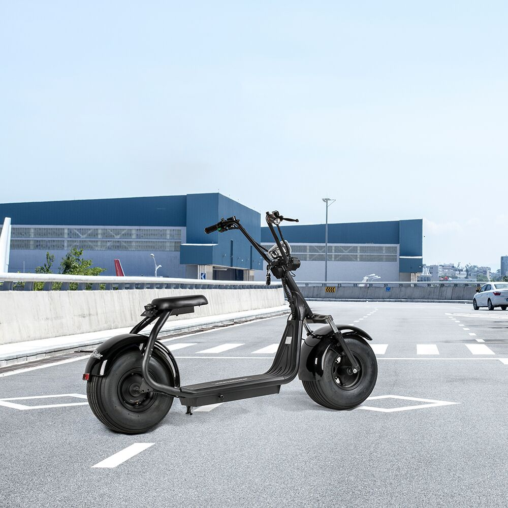 60V 1000W EEC citycoco electric scooter with side views for European countries