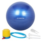 55 CM New Home Gym Exercício Yoga Workout Fitness Yoga Bola