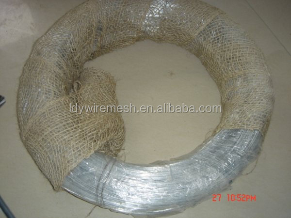 Special Offer good quality electro galvanized iron wire from China supplier