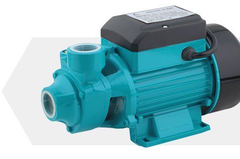 Portable 0.5 hp Pressure Booster Electric Domestic Water Pump