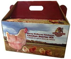 Murray Mcmurray Hatchery MMH5MSK Hatchery Chicken Starter Kit