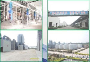 Construction Chemicals Snf, Construction Chemicals Snf