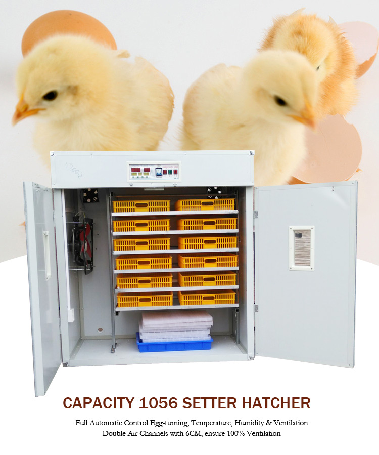Agricultural Farming Digital 1000 Eggs Reptile Turkey Egg Setter Incubator Hatcher Machine Thermometer Price