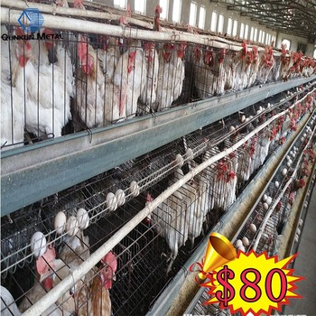Commercial Chicken House alibaba express chicken house/chicken layer farm/commercial