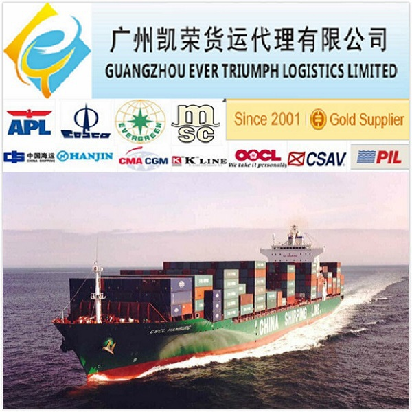 Sea Freight from China to Klaipeda FCL/LCL Shipment