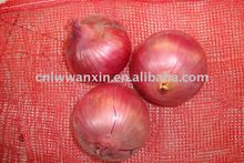 china red onion exporter