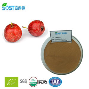 Prevent and Treat Cardiovascular Diseases Hawthorn Leaf Extract