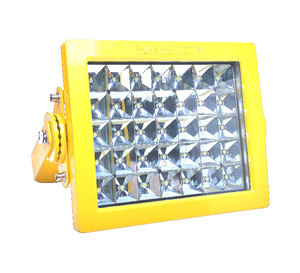 IP66 60w aluminum alloy maintenance-free excellent lumen LED explosion-proof lamp RFBL160