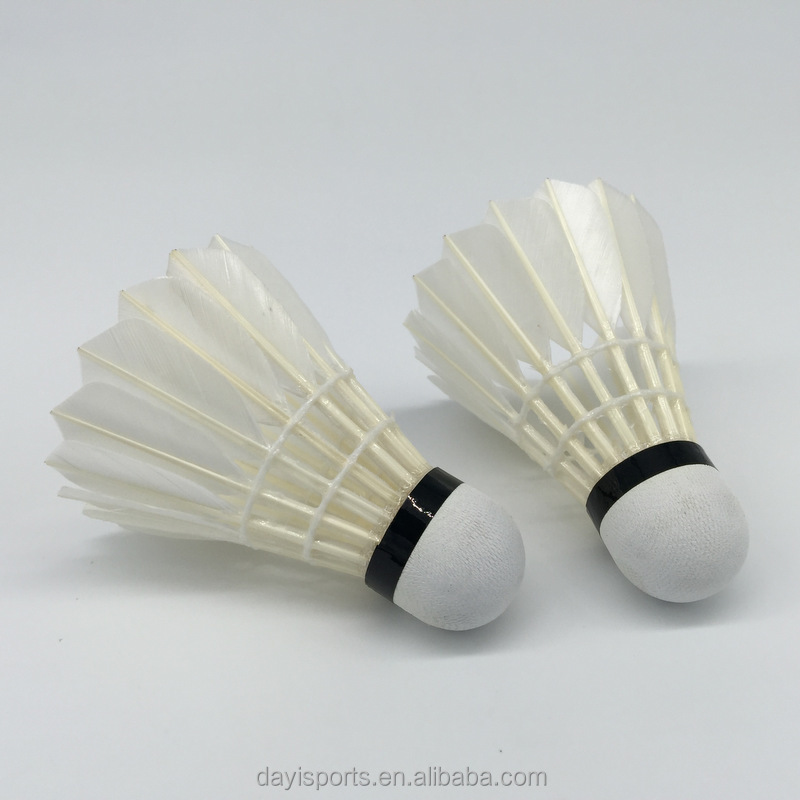 essay on my favourite game badminton My favorite game badminton essay in english it is important to maintain consistency and standard in scientific publications my favorite game badminton.