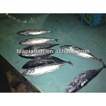 Frozen fish food distributors from china buy food for Best frozen fish to buy at grocery store
