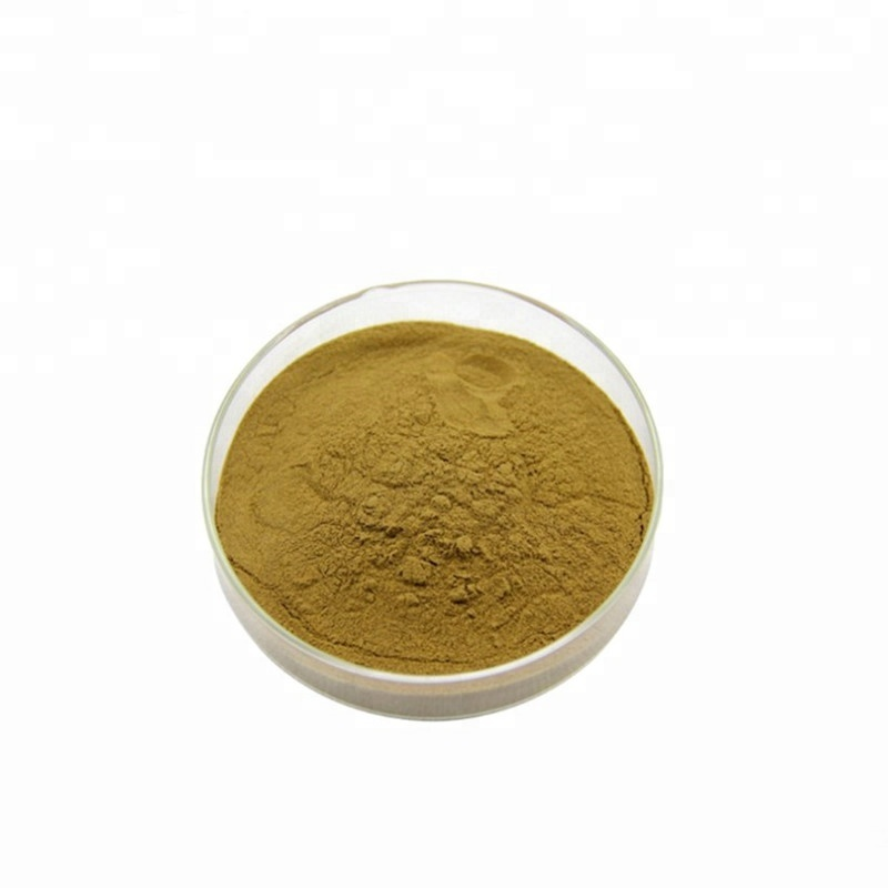 100% Pure Natural Phyllanthus emblica Extract Powder/Amla สารสกัดจาก