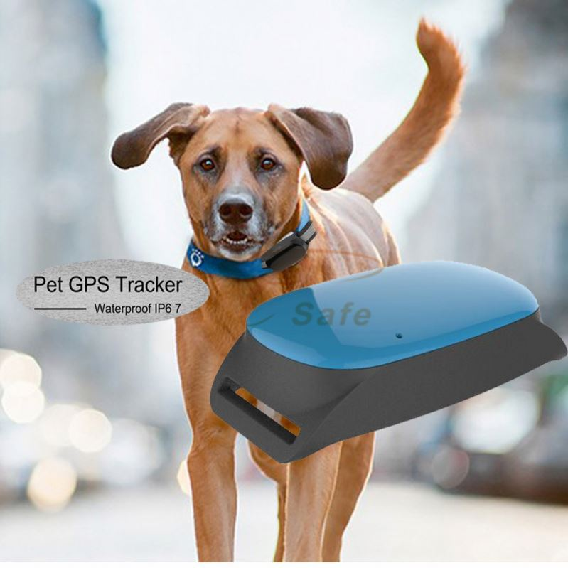 Mini GPS locator Dog Pets Cats <strong>On</strong> <strong>google</strong> Map <strong>Tracking</strong> System ET20