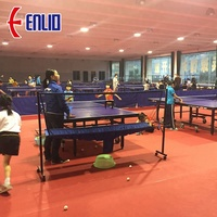 ITTF Approved Table Tennis Court Mat PVC Sports Flooring