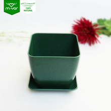 home garden wholesale biodegradable bonsai pot plant