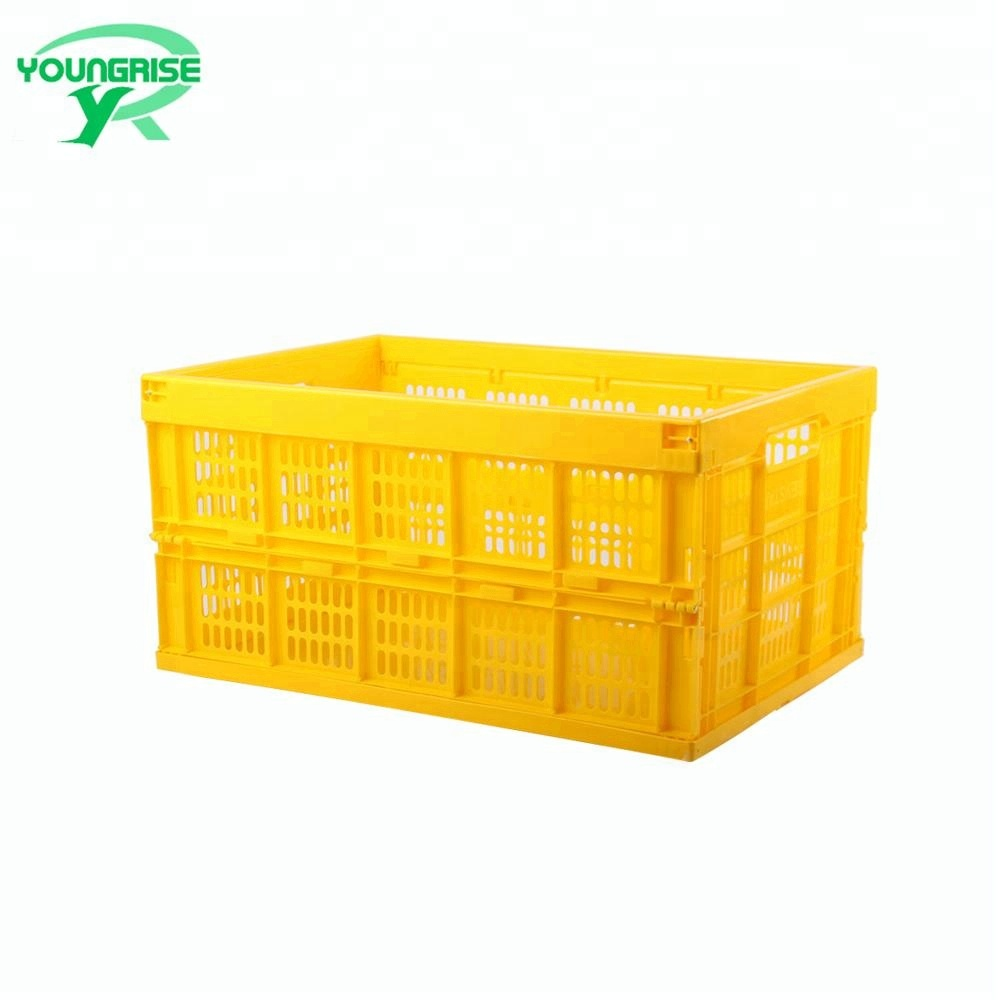 adjustable mesh style fruit foldable plastic storage box,Collapsible Plastic Vegetable Crate