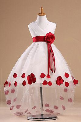 2015 Girls Kids Princess Flower Petals Party Wedding font b Fancy b font Formal Gown font