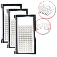 Wholesale 2D 3D 4D 5D 6D pre made fan Eyelashes Extension