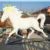 Custom outdoor home garden decorative fiberglass sculpture New product Life Size White horse statues