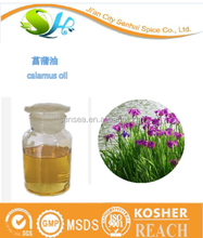 Premium quality natural calamus oil exporter to global