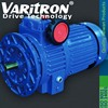 Varitron Cyclo Drive Gear box Speed Reducer Motor E01 9 speed chain