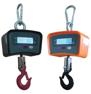 500kg digital crane scale electronic factory weighing scale