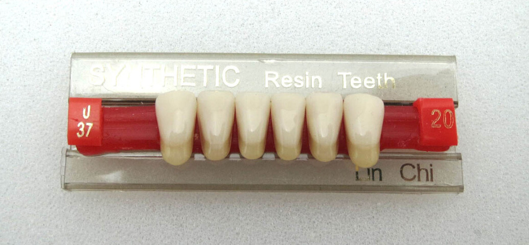 Dentures Synthetic Polymer Teeth / Acrylic Teeth