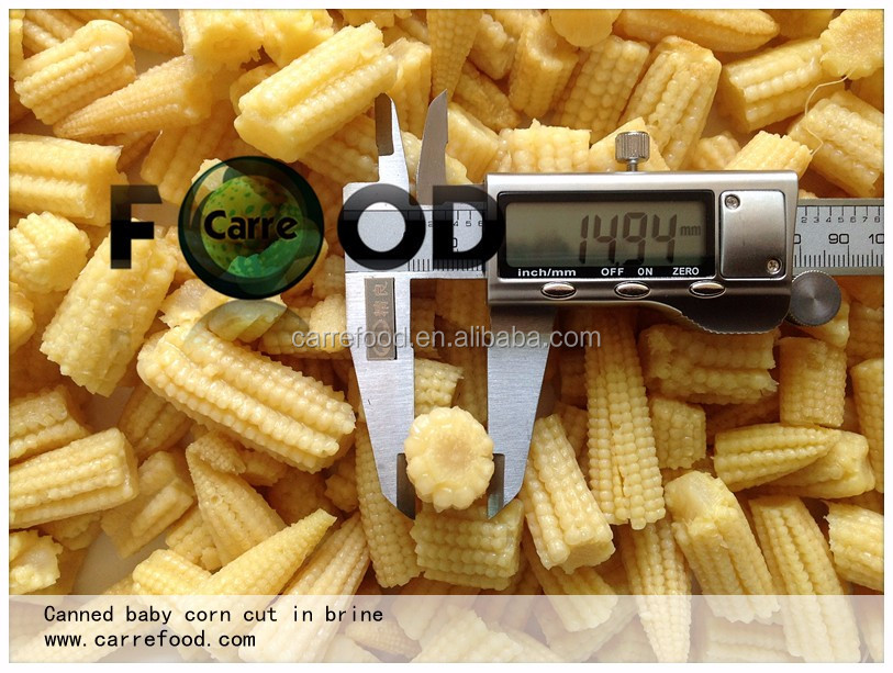 Baby young corn 400 gram/fresh sweet baby corn cobs/Canned whole Young Baby Corn