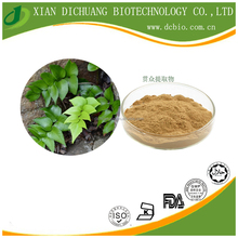 natural Fortunes Boss Fern Rhizome Extract/Champion Wood Fern Extract/Rhizoma Cyrtomii extract Powder