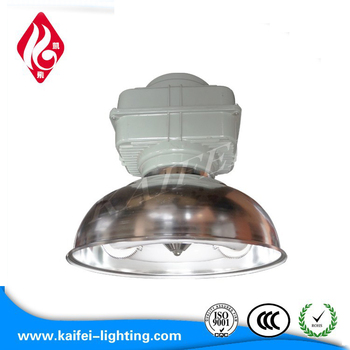 40w 80w 100w Induction Lighting Manufacturers Lamp Producer Product On