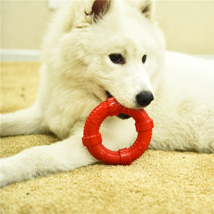 Tianyuan cheap price wholesale Pet Interactive fun Dog Teething Latex pet toys chew for dog