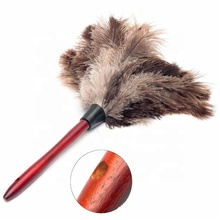 D-TN Manico In Legno Birichino Ostrich Feather Duster Pulizia