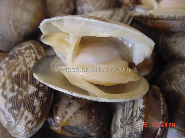 seafood frozen canned baby clam