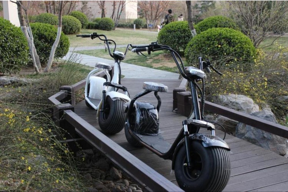 Two wheels HARLY electric scooter bike motorcycle citycoco