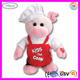 A025 Soft Musical Recorder Pig Toy Stuffed Plush Singing Pig