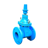 /product-detail/ductile-cast-iron-non-rising-stem-gate-valve-3-inch-for-hdpe-pipe-60510009746.html