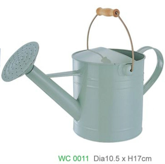 Metal Dual Actional Watering Can With Removable Threaded Shower Head Perfect For Garden Horticultural Cultivation Maintenance Cans