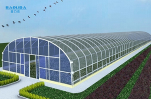 high quality steel pipe structure hoop green house tunnel greenhouse