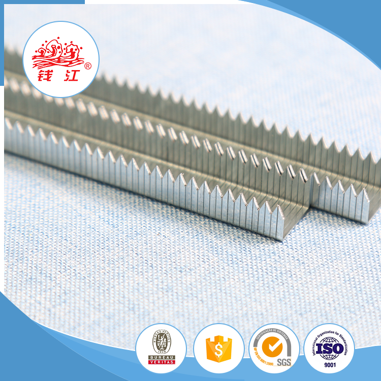 Nail supplier Qianjiang odm pointed staple decorative eagle nail tip