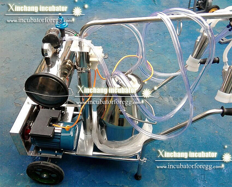 Newest Electric Piston Portable Cow Milking Machine Price