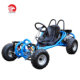 Private design 196cc go kart buggy with front suspension