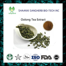 Organic Instant Oolong Tea Extract, Oolong Tea Powder 80% Polyphenols
